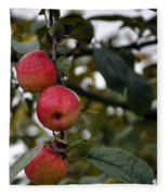 Three Apples Fleece Blanket