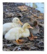 Three Baby Ducks Fleece Blanket