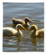Three Baby Ducks Swimming Fleece Blanket