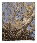 Three Baby Owls  Fleece Blanket