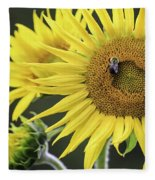 Three Bees On A Sunflower Fleece Blanket
