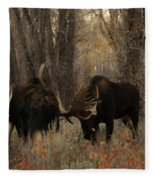 Three Bull Moose Sparring Fleece Blanket