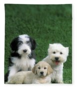 Three Diffferent Puppies Fleece Blanket