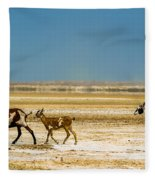 Three Goats In A Desert Fleece Blanket