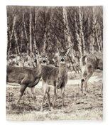 Three In The Field Fleece Blanket