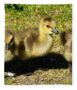 Three Little Goslings Fleece Blanket