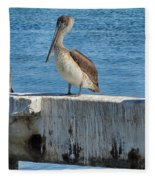 Three Pelicans Fleece Blanket