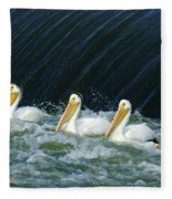 Three Pelicans Hanging Out  Fleece Blanket