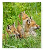 Three Red Fox Pups Fleece Blanket
