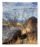 Three Rivers Petroglyphs 7 Fleece Blanket