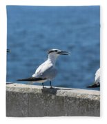 Three Turning Terns Fleece Blanket