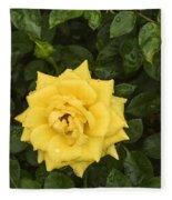 Three Yellow Roses In Rain Fleece Blanket