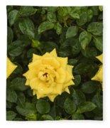 Three Yellow Roses Fleece Blanket
