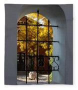 Through The Fence Window Fleece Blanket