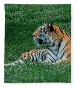 Tiger At Rest 1 Fleece Blanket