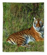 Tiger In The Grass Fleece Blanket