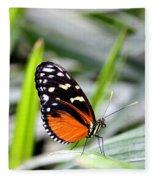 Tiger Longwing Butterfly Fleece Blanket