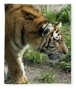 Tiger Stalking Fleece Blanket
