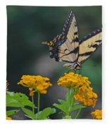 Tiger Swallowtail And Lantana Fleece Blanket