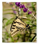 Tiger Swallowtail Butterfly Feeding Fleece Blanket