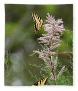 Tiger Swallowtails Fleece Blanket