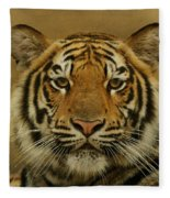 Tiger Tiger Fleece Blanket