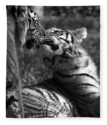 Tigers Kissing Fleece Blanket