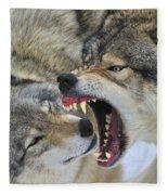 Timber Wolves Play Fleece Blanket