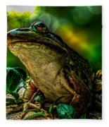 Time Spent With The Frog Fleece Blanket