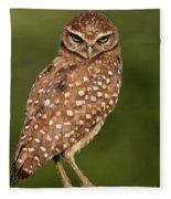 Tiny Burrowing Owl Fleece Blanket