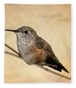 Tiny Hummingbird Resting Fleece Blanket