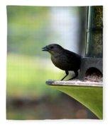 Tiny Seed For A Tiny Bird Fleece Blanket