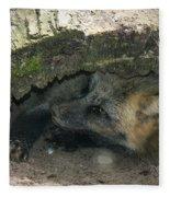 Tired Fox Fleece Blanket
