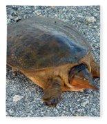 Tired Turtle Fleece Blanket
