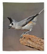 Titmouse Preparing For Takeoff Fleece Blanket