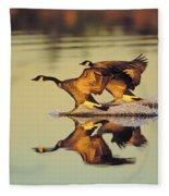 Tk0157, Thomas Kitchin Canada Geese Fleece Blanket