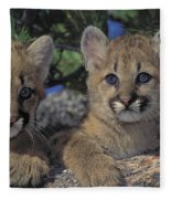 Tk0615, Thomas Kitchin Cougarmountain Fleece Blanket