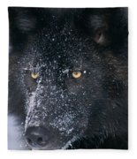 T.kitchin Tk1731e, Gray Wolf, Timber Fleece Blanket