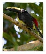 Toco Toucan Amazon Jungle Brazil Fleece Blanket