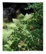 Tod Creek  Fleece Blanket