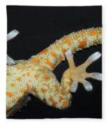 Tokay Gecko Feet Fleece Blanket