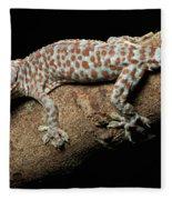 Tokay Gecko In Defensive Display Fleece Blanket
