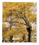 Tombs Under Oaktree Fleece Blanket