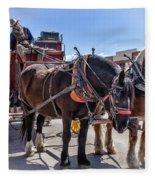 Tombstone Stagecoach 2 Fleece Blanket