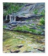 Tom Branch Falls Fleece Blanket