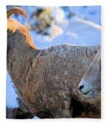 Too Early Fleece Blanket