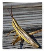 Toothpick Grasshopper Fleece Blanket