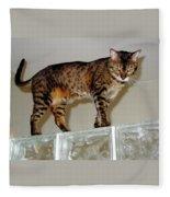 Tora On Glass II Fleece Blanket