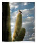 Touch The Sky  Fleece Blanket
