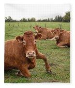 Tough Cows Fleece Blanket